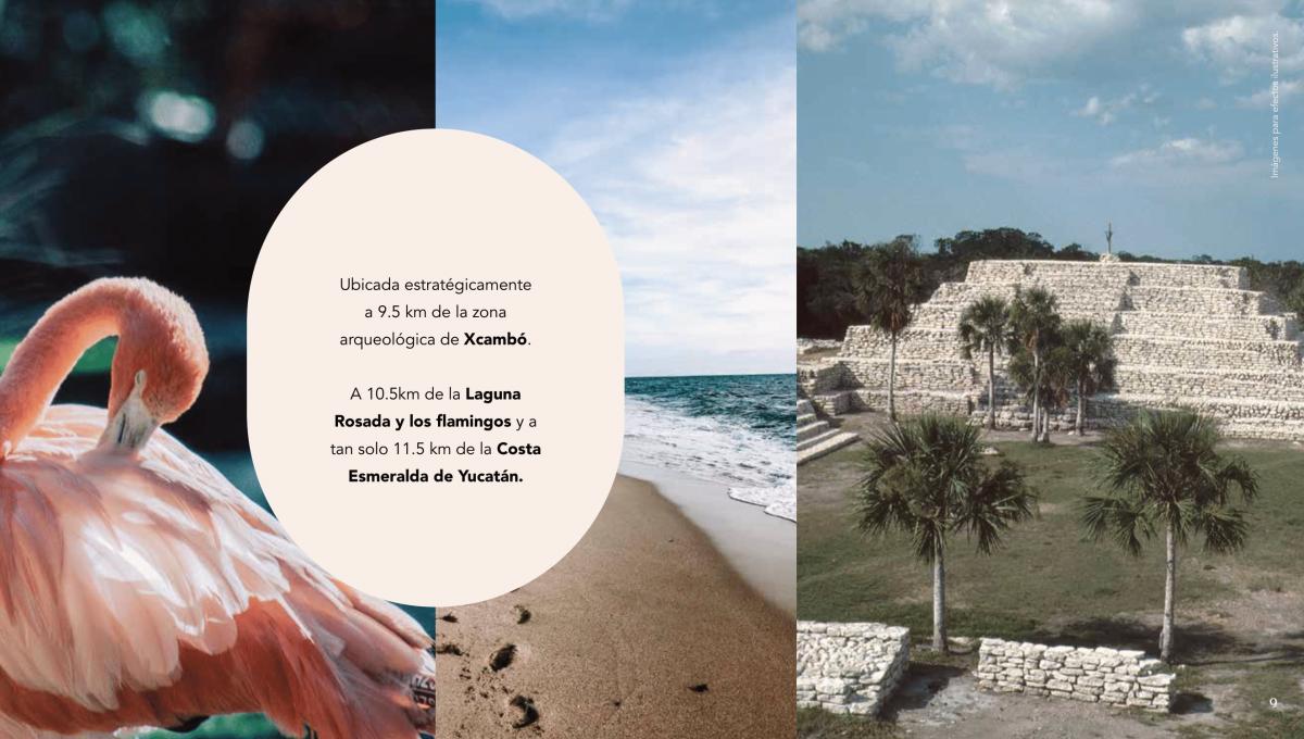 La Calma_Brochure GENÉRICO (1)-10