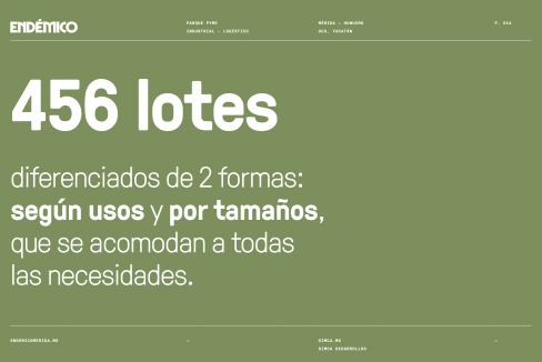 Endémico_Presentación_Ventas_Desktop-14