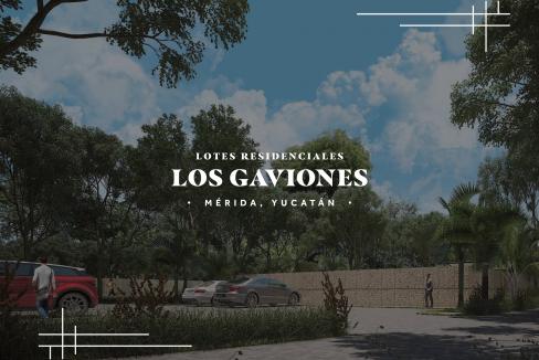 LOS GAVIONES_compressed-01