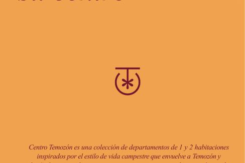 BROCHURE CENTRO TEMOZÓN.-02