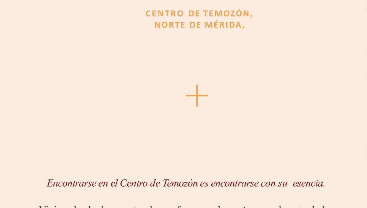 BROCHURE CENTRO TEMOZÓN.-04