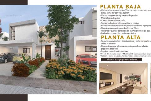 Brochure AMARANTO-06